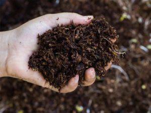 Почва для травяного сада компост компостная смесь