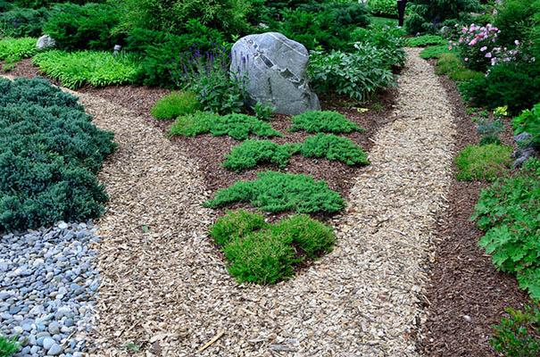 Здоровые растения в вашем саду мульчирование мульча