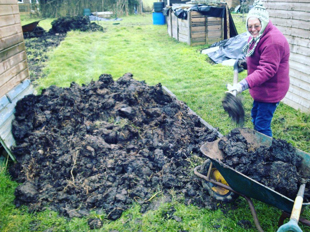 Подготовка почвы для посадки трав в саду органическое удобрение навоз