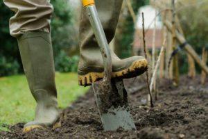 Здоровые растения в вашем саду перекапывание земли грунт почва