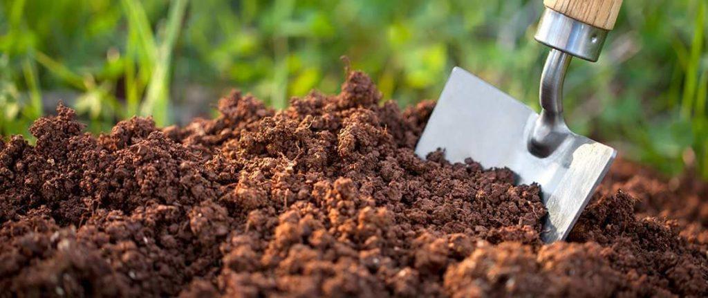 Почва для травяного сада грунт земля