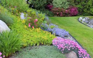 почвопокровные растения сад проект дизайн ландшафтный низкорослые
