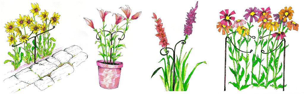 Правильная поддержка садовых растений цветы подпорки держатели