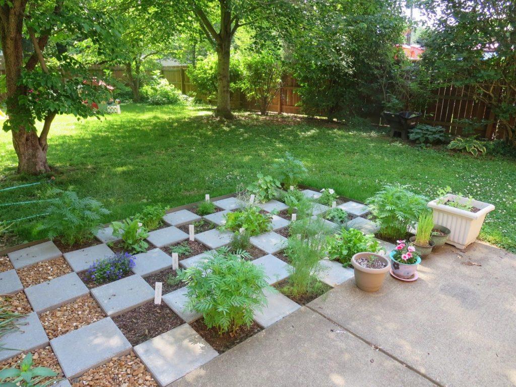 Учимся выращивать травы сад патио двор дорожка