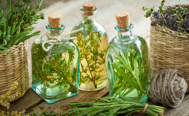 Советы по выращиванию трав хранение масло