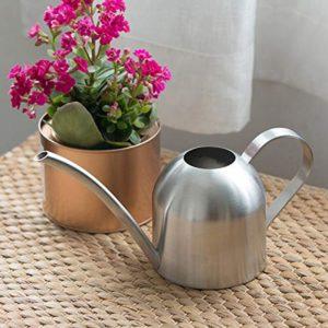 полив горшечное комнатное растение цветок лейка Простые правила полива растений