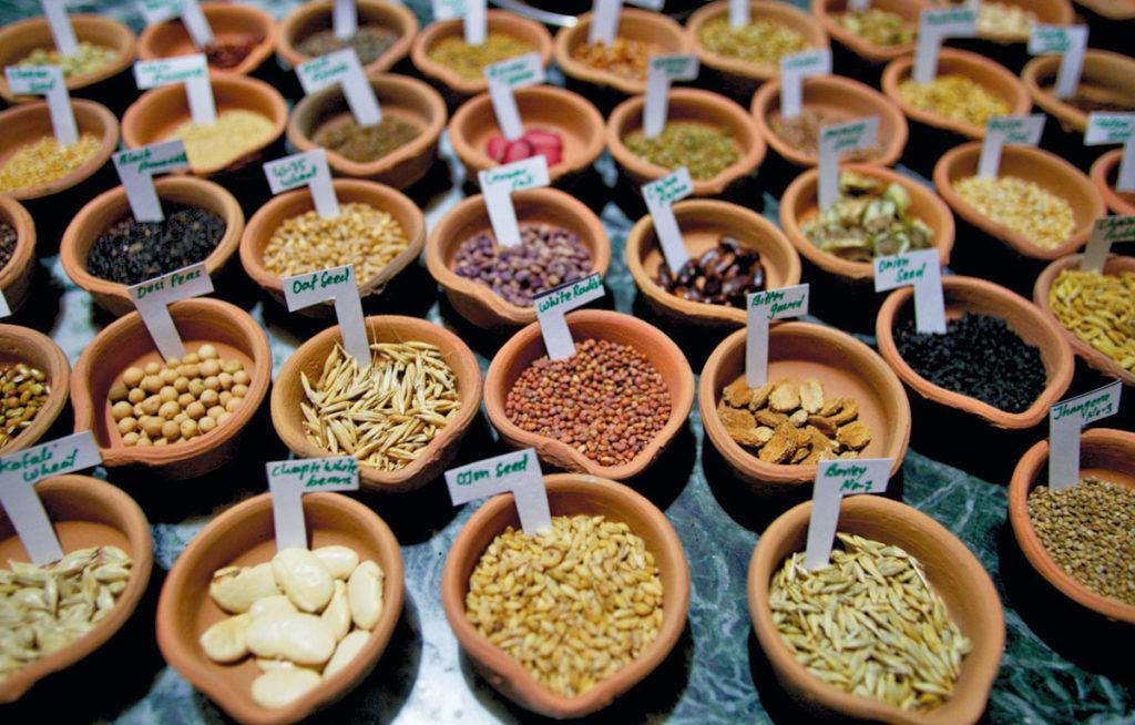 Красный сладкий болгарский перец миски глиняные этикетка Сохранить семена сэкономить деньги