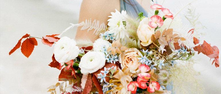 Сухоцветы для букетов