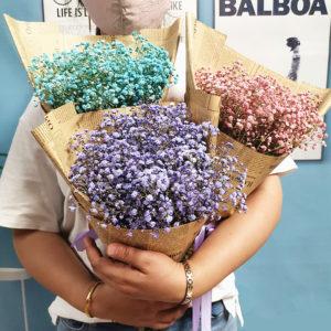незабудка сухоцветы сухие цветы растения букет композиция