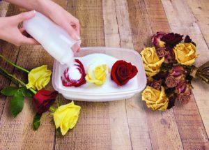 силикагель сушка цветы сухоцветы однолетние растения