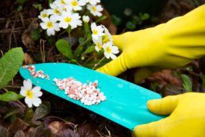 гранулированные сад уход цветы порошкообразные удобрения